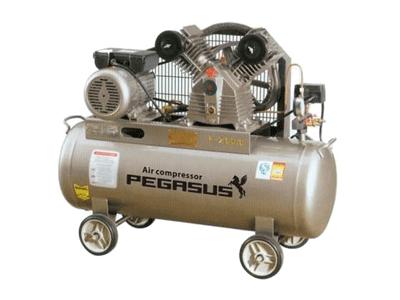 Máy nén khí piston PEGASUS TM-V-0.25/8-180L